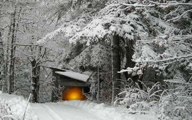 winter-hiver